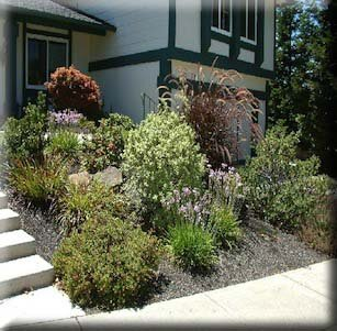 Small Space Front Yards